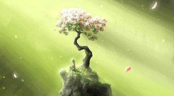 心生菩提樹